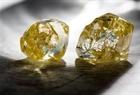 Petra's Two Finsch Diamonds