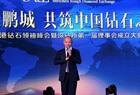 Wang Ning Shenzhen Rough Diamond Exchange