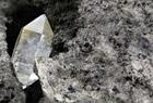 Joyce Trust Diamond 150