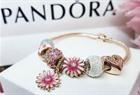 Pandora  charm bracelet 150