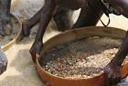 Sierra Leone Artisanal Miners
