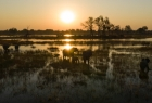 De Beers Okavango Delta National Geographic
