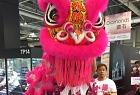 Hong Kong Mascot